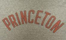 他の写真2: 80'S CHAMPION トリコタグ 88/12 Tシャツ 染み込みプリント 杢グレー USA製 (VINTAGE)